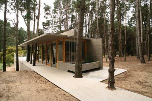Amazing treehouse 31