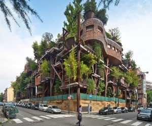 Amazing treehouse 5