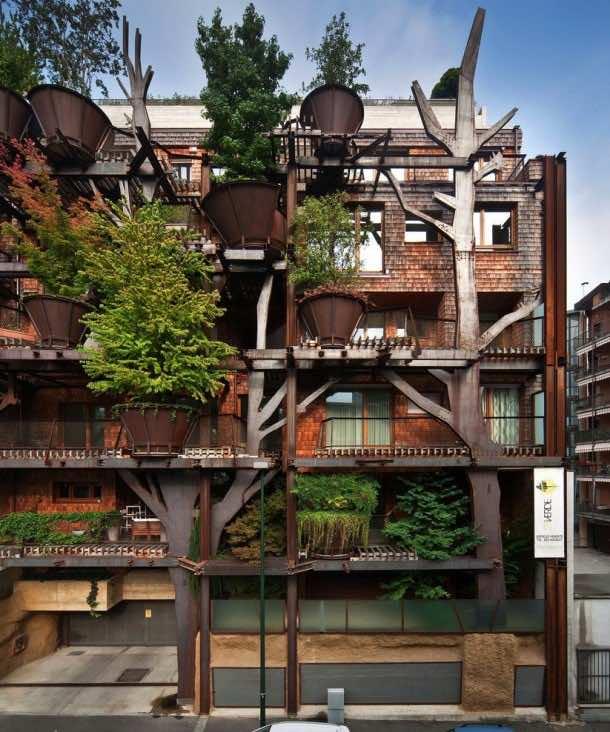 Amazing treehouse 6