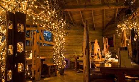 Amazing treehouse 9