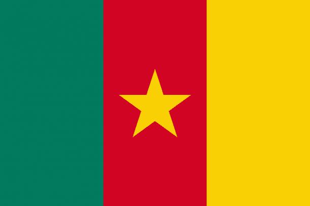 Cameroon Flag (14)
