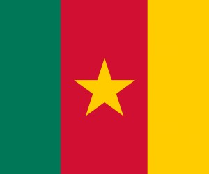 Cameroon Flag (2)