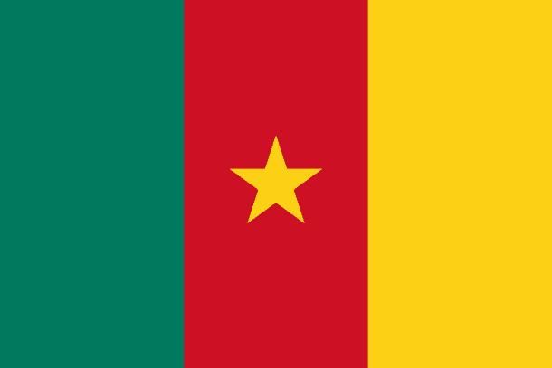 Cameroon Flag (21)