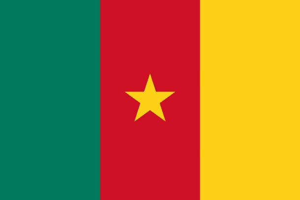 Cameroon Flag (24)