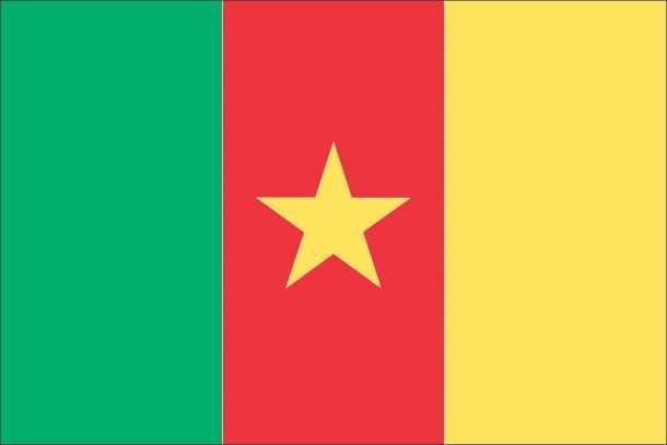 Cameroon Flag (3)