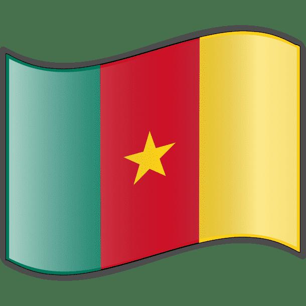 Cameroon Flag (4)
