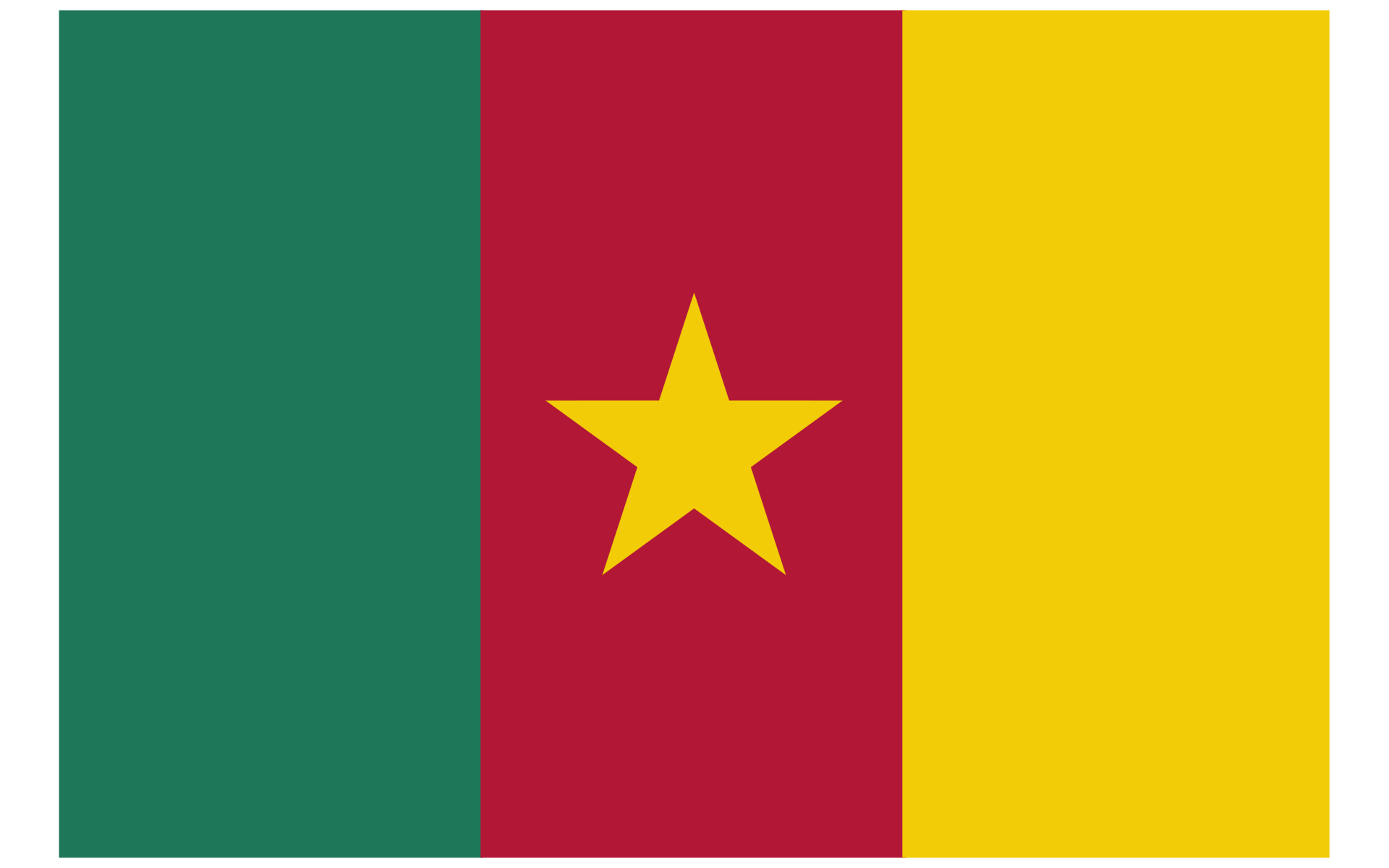 Cameroon New Flag
