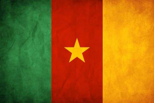 Cameroon Flag (7)