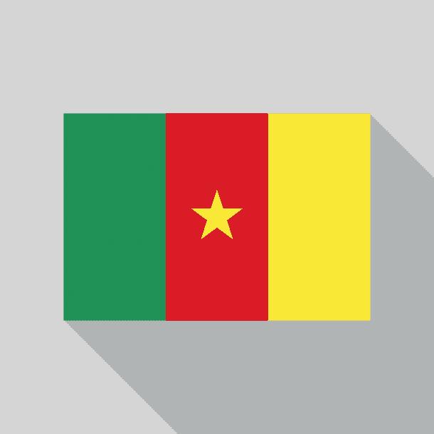 Cameroon Flag (8)