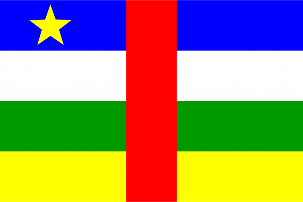 Central African Republic Flag (16)