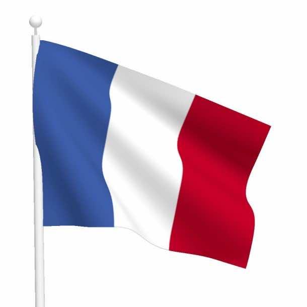 Clipperton Island Flag (12)