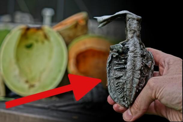 Aluminium In Melons-1