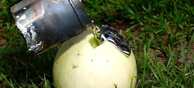 Aluminium In Melons