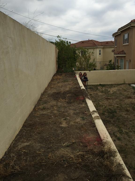 DIY backyard2
