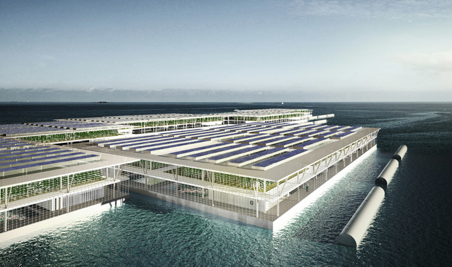Floating Solar Farm Is Capable of Producing 8 Tons Of Vegetables Per Year 2