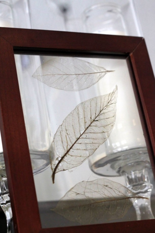 19 Wonderful Things You Can Do With Leaves 15