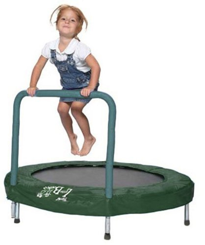 10 Best Trampolines for Home (3)