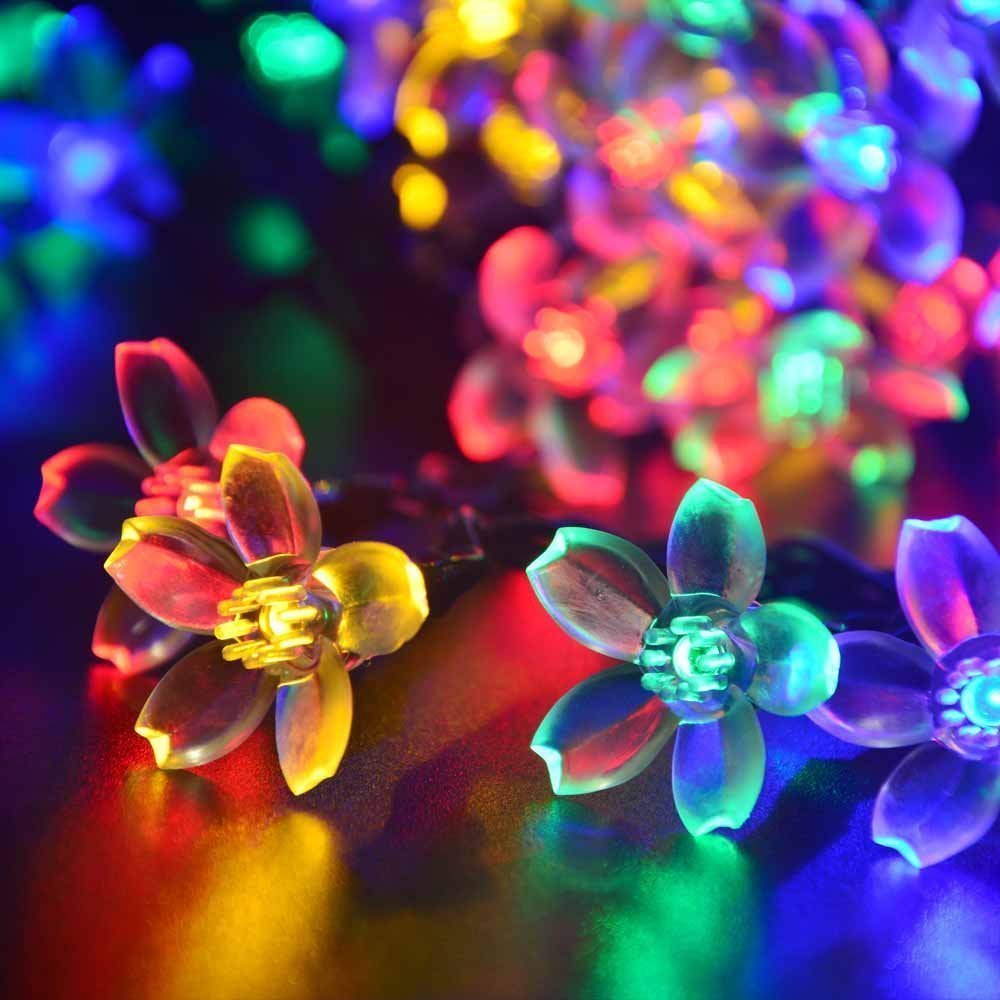 ... Lights 50 LED Multi Color Flower/Blossom Lighting for Christmas Trees