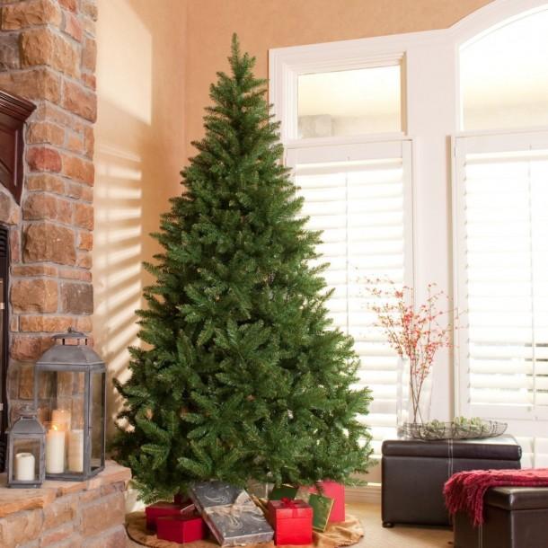 Best christmas tree (5)