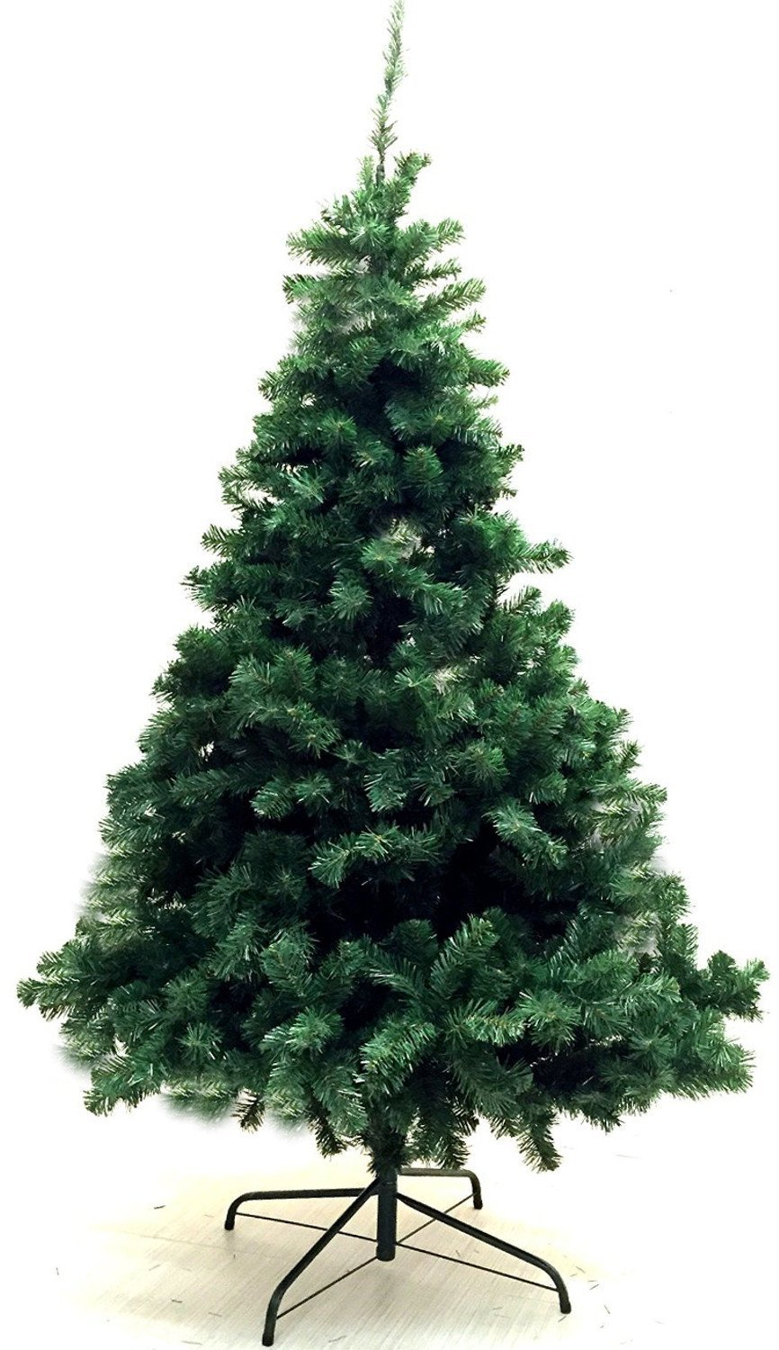 10 Best Christmas Trees For Your Home