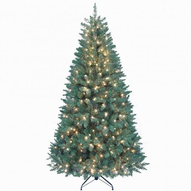 Best christmas tree (8)