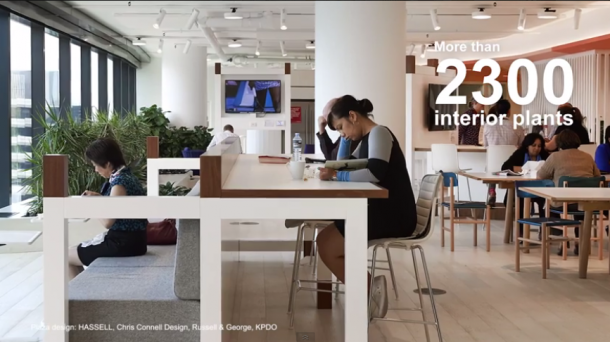 Check Out The Healthiest Workplace In The World 6
