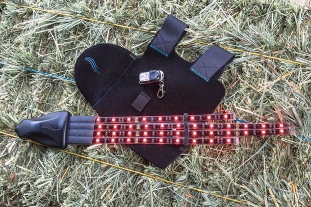 Tail Lights Rider Safety Program – Horse Safety 3