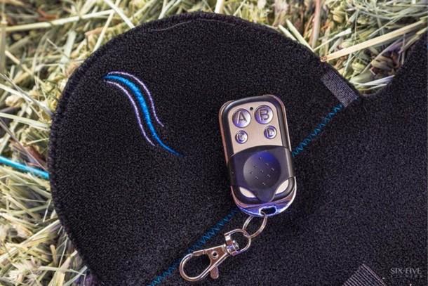 Tail Lights Rider Safety Program – Horse Safety 4