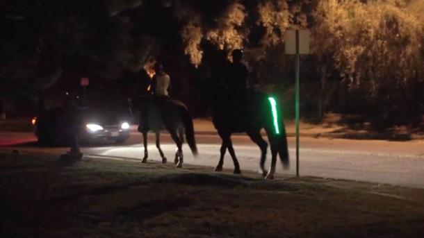 Tail Lights Rider Safety Program – Horse Safety 5
