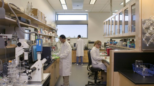 Top 5 Engineering Fields As Per Millennials Biomedical