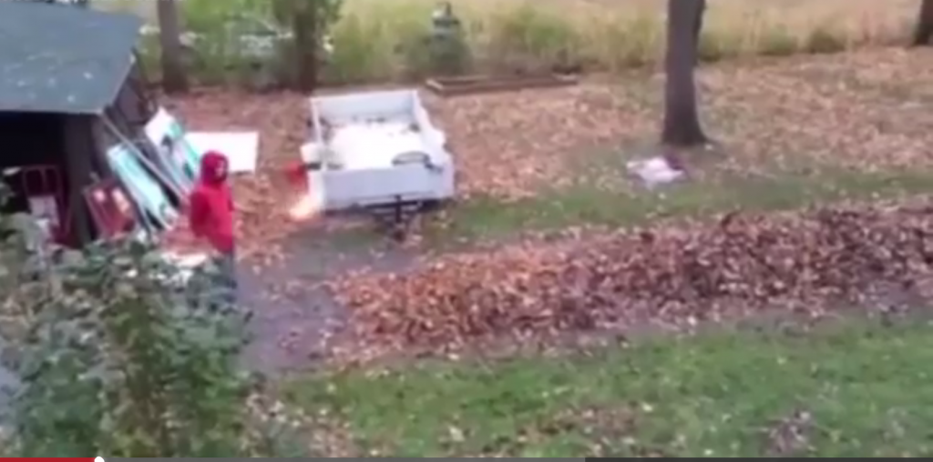 Watch this Incredible but Dangerous Way to Get Rid of those Troublesome Autumn Leaves   YTPak