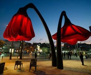 inflatable poppy plants3