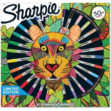 10 Best Sharpie sets (4)
