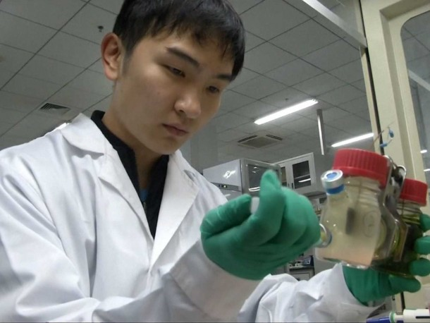 Chinese Students Create Electricity From A Spoonful Of Sugar