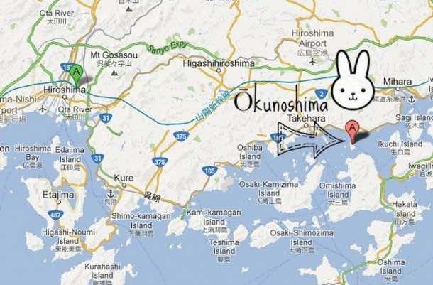 Okunoshima Us agi Jima16