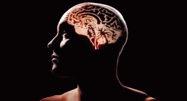 Profound bullshit linked to lower intelligence4