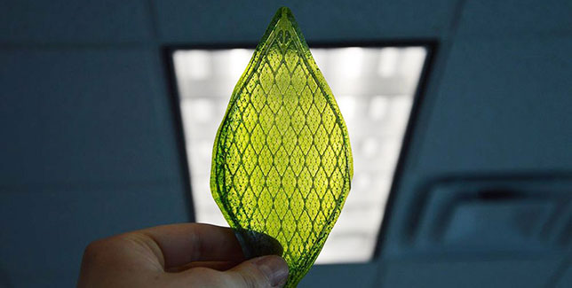artificial leaf4