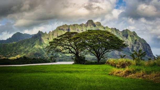 hawaii wallpaper 29