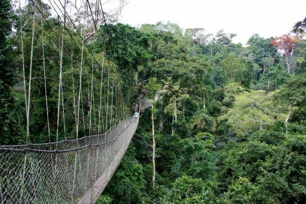 10 most Dangerous Bridges (6)