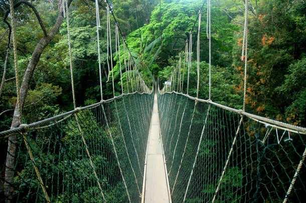 10 most Dangerous Bridges (7)