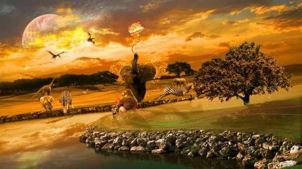 Africa Wallpaper 11