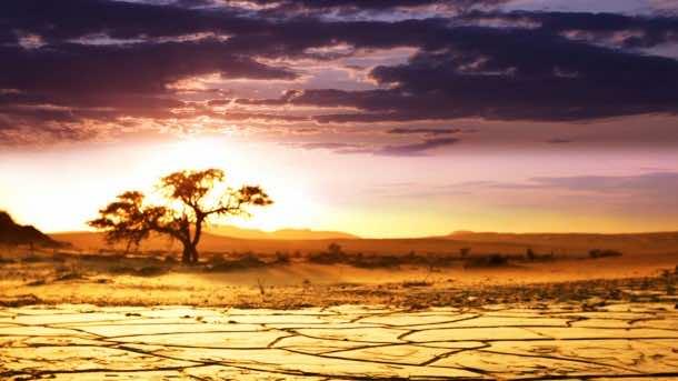 Africa Wallpaper 17