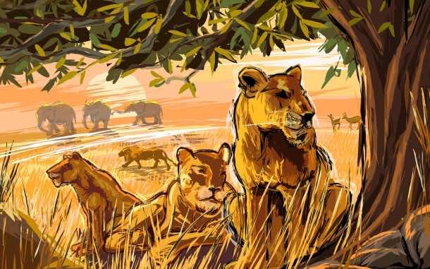 Africa Wallpaper 36