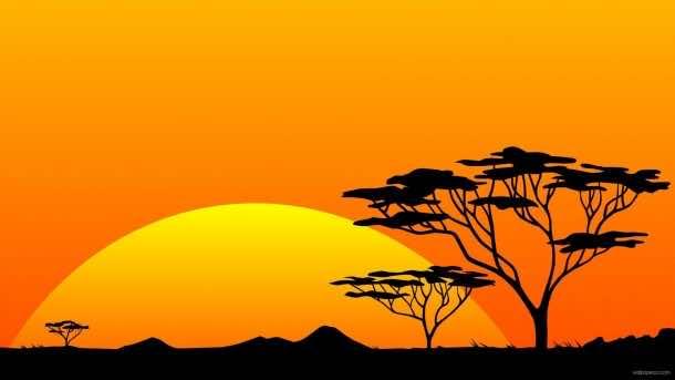 Africa Wallpaper 5