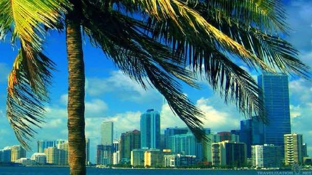 Miami wallpaper 9