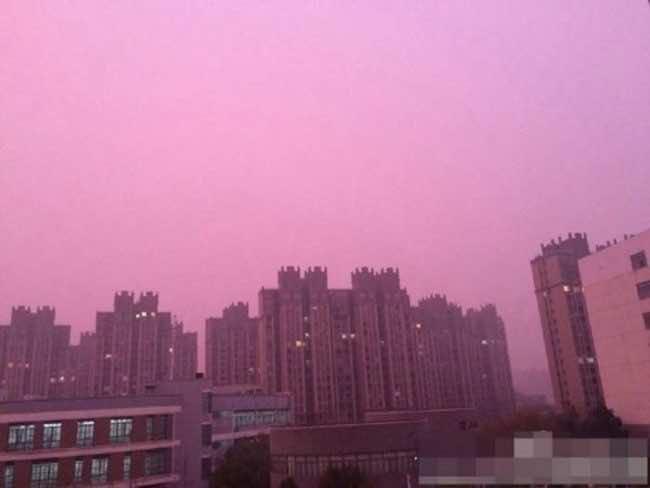 Nanjing pink sky4