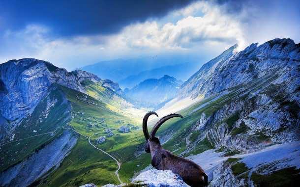 Switzerland wallpaper 20
