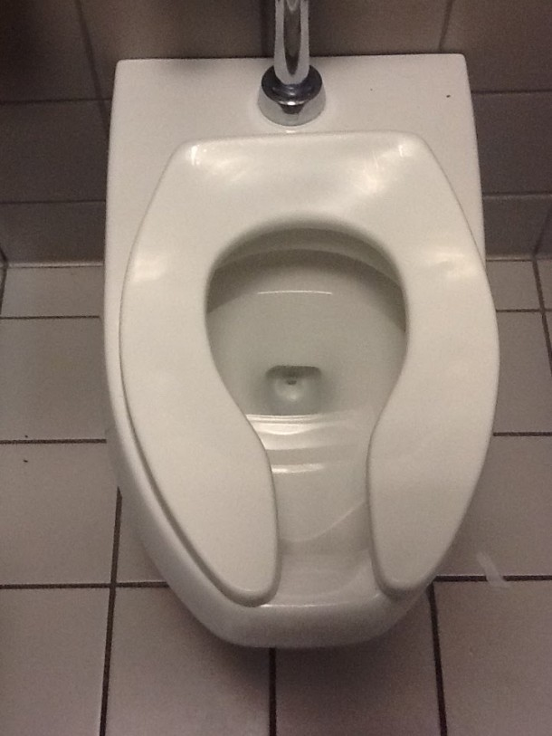 This Is Why Public Toilet Seats Are U-Shaped 3