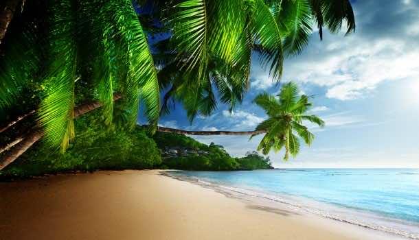 beach wallpaper 13