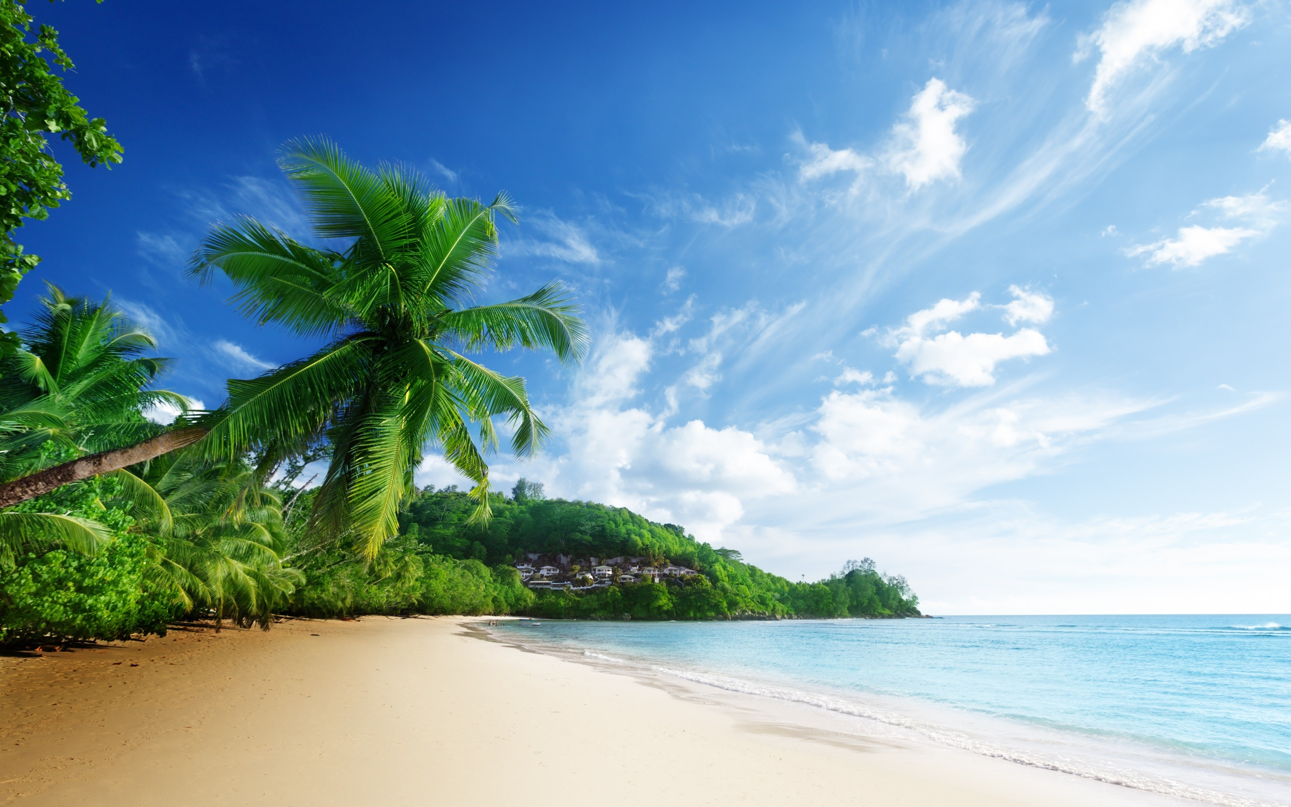 45 Beach Wallpaper For Mobile And Desktop In Full HD For